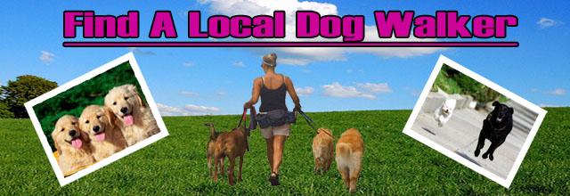 Dog Boarding Lindsay Ontario